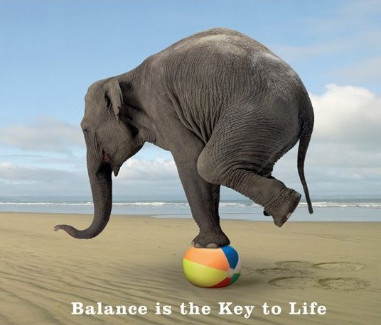 A balanced life is a healthy life